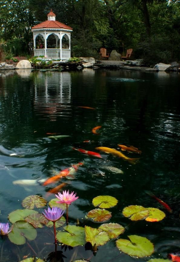 Water_Gardens_(67)L