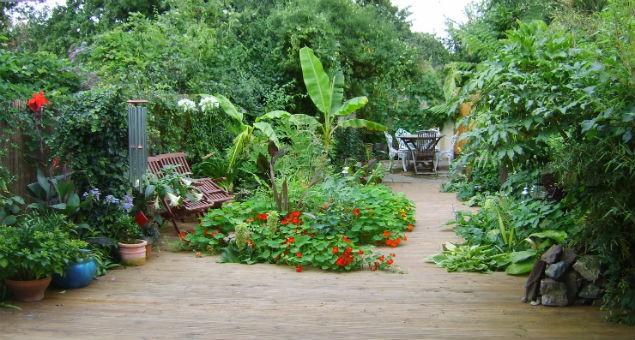 tropická zahrada2