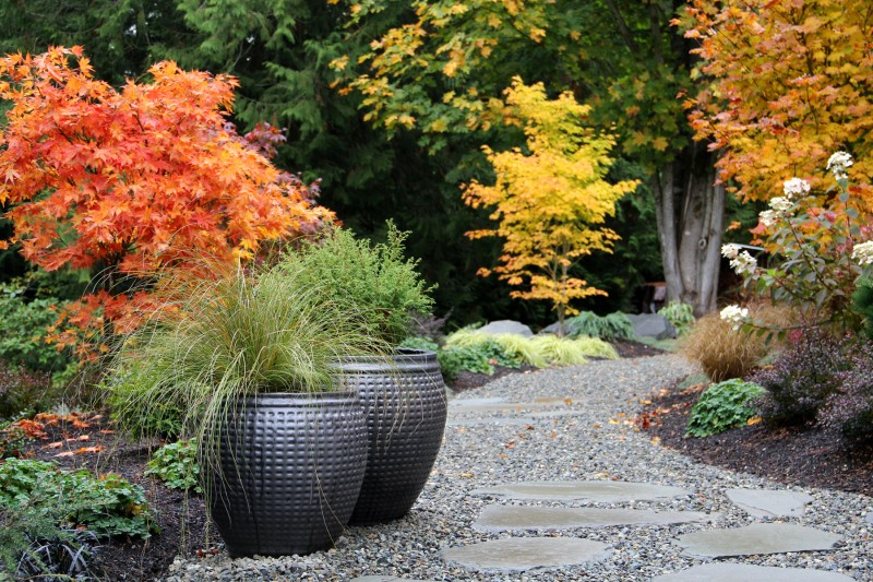bliss garden design1