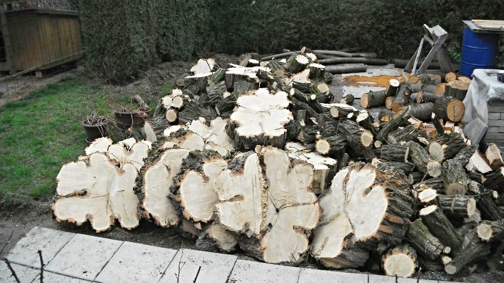 Arborista Ladislav Kunik 008